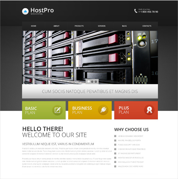 FREE DEMO DOWNLOAD Premium Drupal Theme for Web Hosting