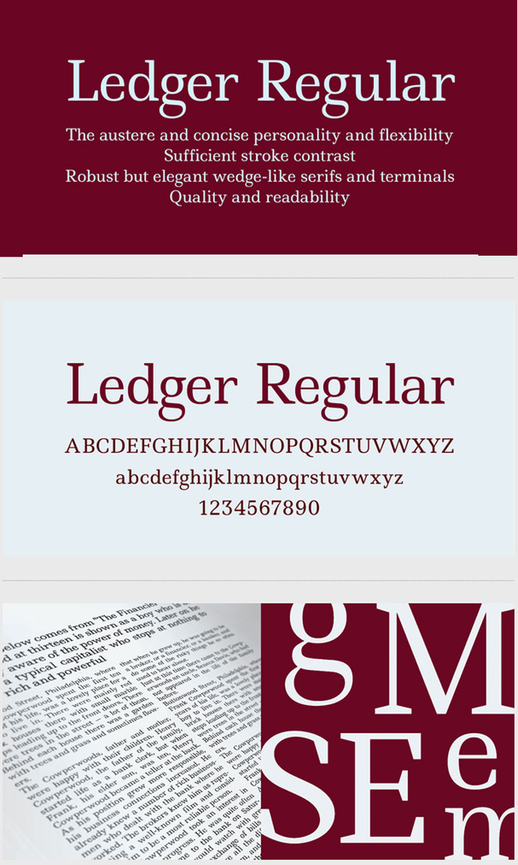 Ledger Regular