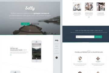 Selly Landing Page