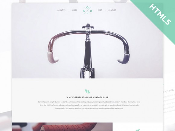 Bicycle Flat Template